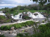 Cachamay, parc national, ville de Guayana venezuela images libres de droits