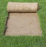 Cache de tapis d'herbe Images stock