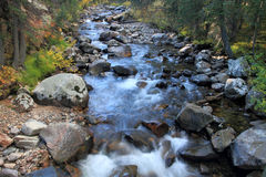 Cache La Poudre River #2, autumn Royalty Free Stock Photography