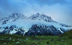 Cachemira Gulmarg con las montañas fotografía de archivo