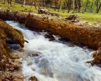 Cachemira poco río foto de archivo libre de regalías