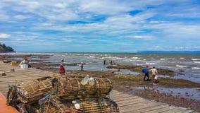 Cacher del cangrejo de la playa de Keb fotografía de archivo libre de regalías