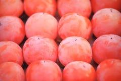Cachi rosso Fotografia Stock Libera da Diritti