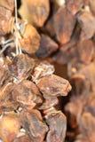 Cachi saporiti e dolci, asciutti immagine stock