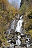 Cachoeira áspera do rio da montanha Imagens de Stock
