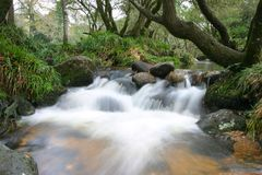 Cachoeira 1 foto de stock royalty free