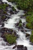 Cachoeira. Fotografia de Stock Royalty Free
