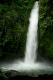 Cachoeira 2 Fotos de Stock Royalty Free