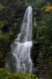 A cachoeira Imagem de Stock