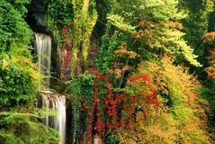 Cachoeira imagem de stock