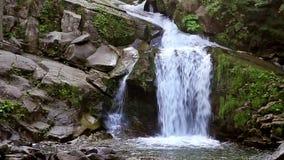 Cachoeira vídeos de arquivo