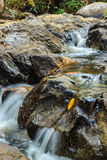 Cachoeira agradável no dia ensolarado Fotos de Stock