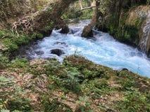 A cachoeira ajardina o fundo Fotografia de Stock Royalty Free