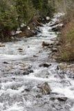 Cachoeira alimentada geleira de Nisqually Imagens de Stock