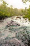 Cachoeira ao longo do Aurlandsfjellet Noruega Fotos de Stock