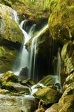 Cachoeira após um chuveiro da mola. Fotos de Stock