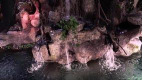 Cachoeira artificial no interior filme
