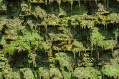 Cachoeira artificial pequena Fotografia de Stock