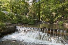 ? a cachoeira ascading de uma montanha flui nos Carpathians Imagens de Stock