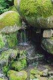 Cachoeira bonita com os jatos da água nas rochas Imagem de Stock