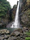 Cachoeira bonita da manhã em Sri Lanka fotografia de stock royalty free