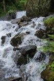 Cachoeira bonita de Oltschibach, Unterbach, a municipalidade de Brienz Imagem de Stock Royalty Free