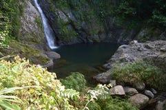 Cachoeira bonita Doña Juana da selva Imagem de Stock