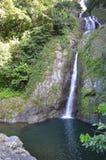Cachoeira bonita Doña Juana da selva Fotografia de Stock