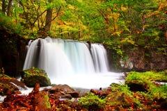 Cachoeira bonita durante o outono na fuga de passeio do oirase foto de stock