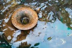 Cachoeira bonita e frasco grande da água Imagens de Stock