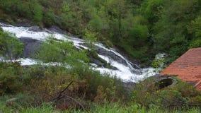 Cachoeira bonita entre a vegetação grossa, Toques imagens de stock