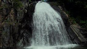 Cachoeira bonita na floresta video estoque