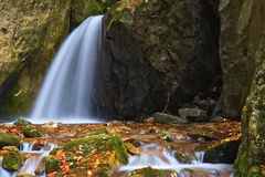 Cachoeira bonita na floresta Imagens de Stock Royalty Free