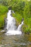 A cachoeira bonita na floresta Imagem de Stock Royalty Free