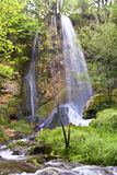 A cachoeira bonita na floresta Imagens de Stock Royalty Free