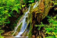 cachoeira bonita na floresta verde em Skra em Grécia norte Fotografia de Stock Royalty Free