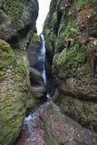 Cachoeira bonita na garganta dos dragonde Drachenschlucht em Eisenach, ringen do ¼ de Thà em Alemanha fotografia de stock