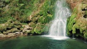 A cachoeira cênico que flui sobre o musgo cobriu rochas video estoque