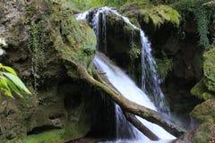 Cachoeira Cascada em Vaioaga fotografia de stock royalty free