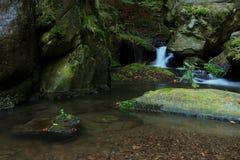 Cachoeira - cascata na floresta do outono Fotografia de Stock Royalty Free