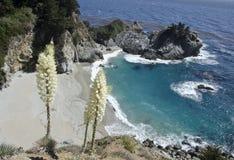 Cachoeira central áspera da costa Fotografia de Stock Royalty Free