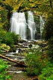Cachoeira cercada com folhas da queda. Fotografia de Stock