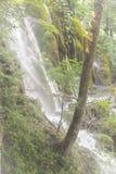 Cachoeira com a árvore na Croácia do norte imagens de stock