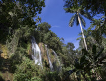Cachoeira com associação Imagens de Stock