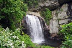 Cachoeira com flores Imagens de Stock Royalty Free