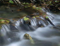 Cachoeira com folhas de outono Foto de Stock Royalty Free
