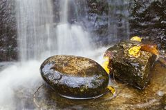 Cachoeira com folhas de outono Fotos de Stock