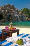 Cachoeira com fruta no primeiro plano Imagem de Stock Royalty Free