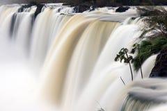 Cachoeira com movimento borrado Fotografia de Stock Royalty Free