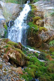 Cachoeira com musgo no desfiladeiro de Tien Shan fotos de stock royalty free